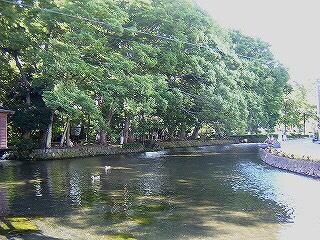 「白滝公園」三島駅から近く、緑豊かで水遊びができる公園
